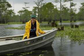 LOUISIANA SWAMP POEM by Sheryl St. Germain